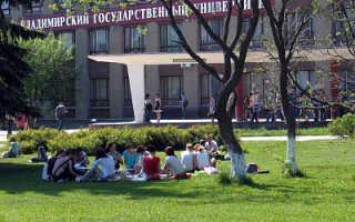 Владимирский государственный университет педагогический институт