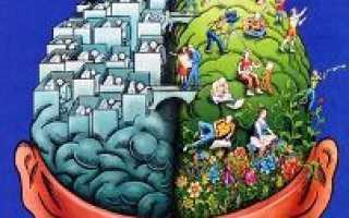 Нейропсихолог образование москва